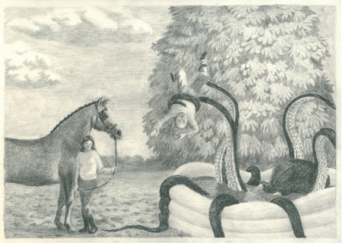 chevalpoulpe